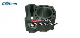 Cylinder motor GSMOON 260CC