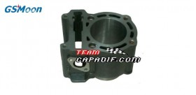 Zylinder Motor GSMOON 260CC