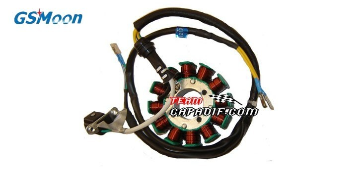 Estator bobina del magneto GSMOON XY260ST-XYKD260-1 -XYKD260-2