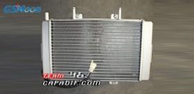 XYST260 radiatore con ventola