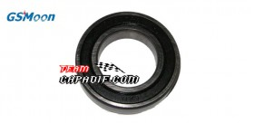 GSMOON 260 Differentiallager BEARING 6007-LS