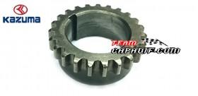 gear drive chain timing Kazuma Jaguar