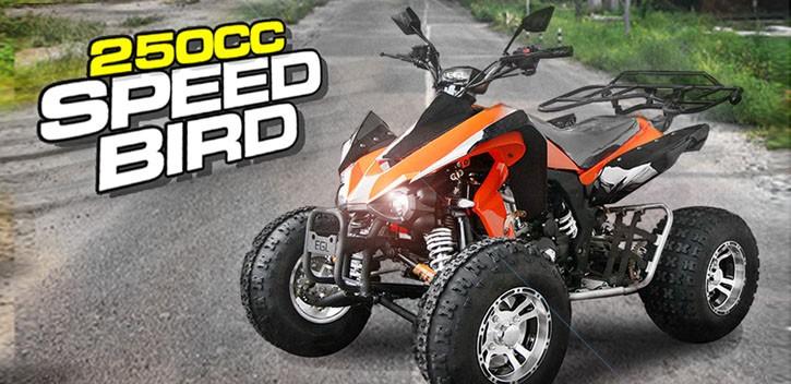 EGL Motor Quad 250CC Speedbird