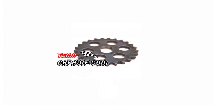 Sprocket chain oil pump for buggy engine 250 cc
