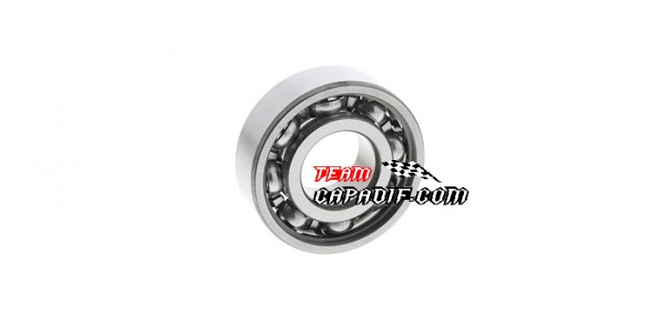 CFMoto 500cc CF188 bearing 6202 for