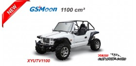 JEEP XYUTV 1100cc 4X4 Homologated Road