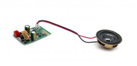 Bluetooth Board + Citycoco Speaker