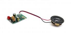 Carte Bluetooth + Haut-parleur Citycoco