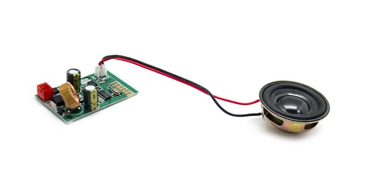 Scheda Bluetooth + Citycoco Speaker