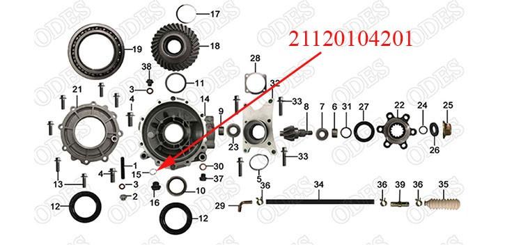 O Ring 19_2.65