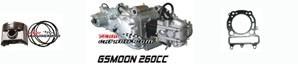 Componentes de motor GSMOON XYST260